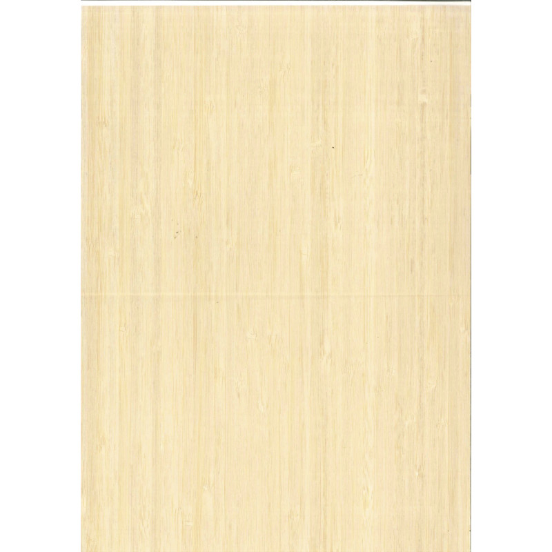 BAMBOU feuille 2500 * 430 mm